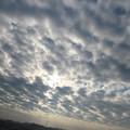 ウロコ雲広がる朝の空♪