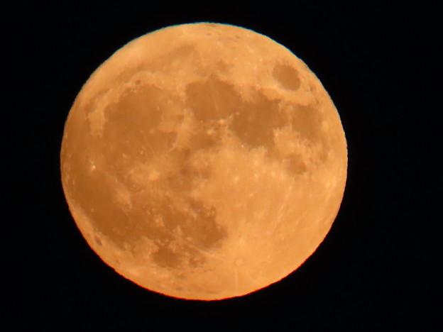 Photos: 今月2回目の満月(ブルームーン)♪