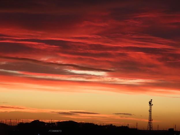 Photos: 輝ける夜明け♪