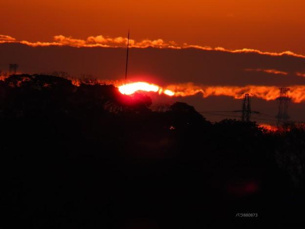 朝陽が顔を見せた♪