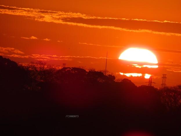 朝陽が丸く♪