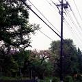 Photos: 平成最後は雨だった