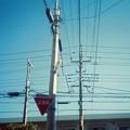 散歩~電線~