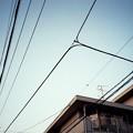 Photos: 線