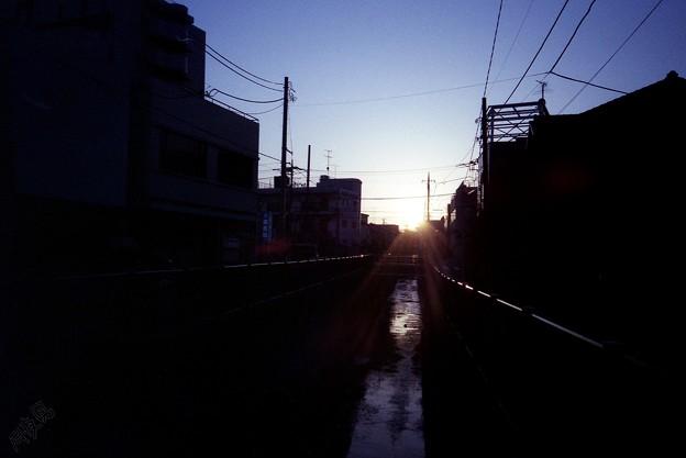 Photos: 眩し…っ