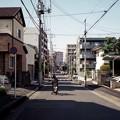 Photos: 犬とお散歩