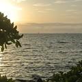 夕方の水平線にヨットの帆