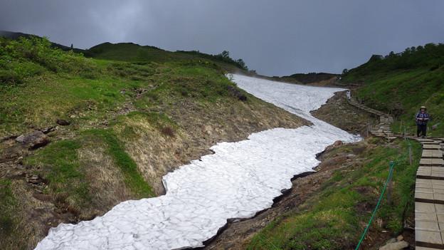 登山道わきの残雪