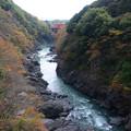 Photos: 高津戸峡紅葉