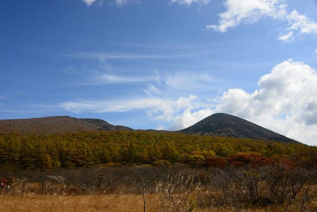 Photos: 筋雲と紅葉