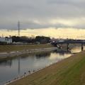 Photos: 新芝川の流れ
