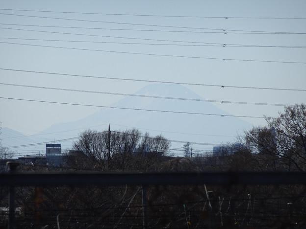 霞んだ富士が見えた