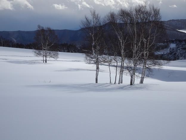 雪原に陽が当ってきた