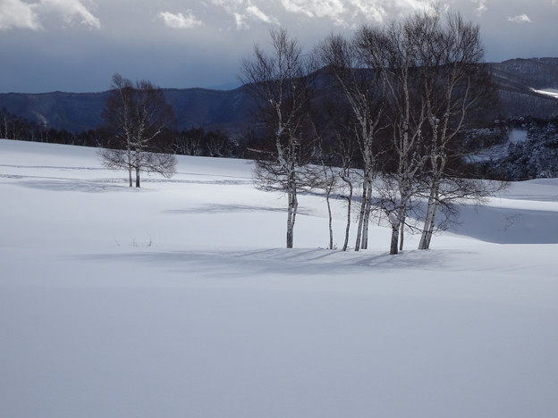 Photos: 雪原に陽が当ってきた