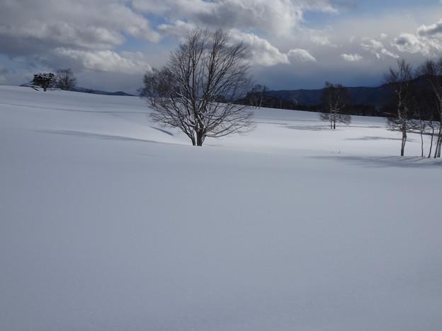 陽が当たってきた雪原