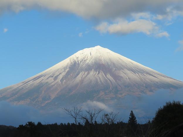 雪化粧の富士山