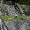 写真: 盛岡城跡公園 180912 (4)