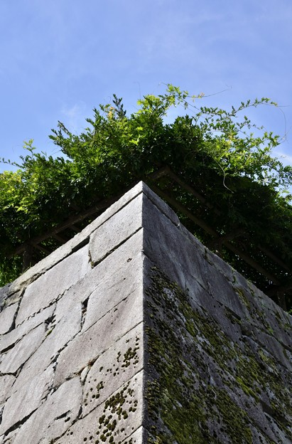 Photos: 盛岡城跡公園 180912 (5)
