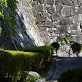 Photos: 盛岡城跡公園 180912 (8)