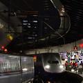 Photos: 東京駅 190307_004