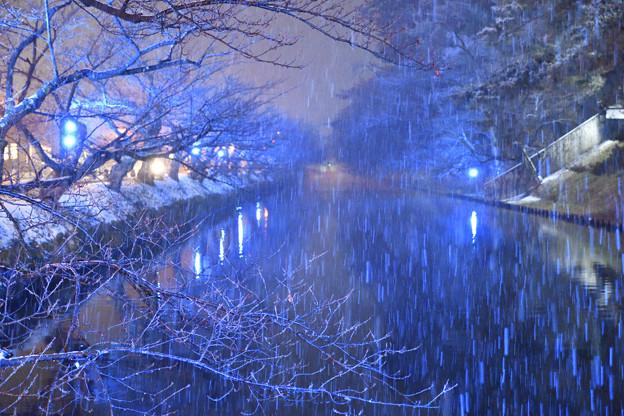 Photos: 弘前城 191225_0014