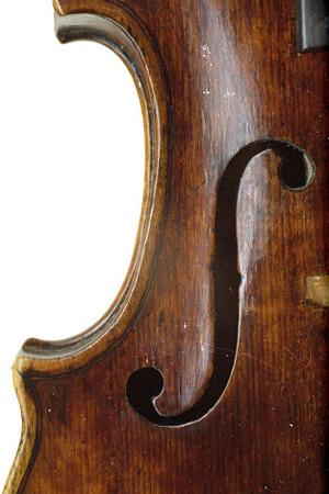 ヴィオラの選び方 東京・中野・練馬・江古田、ヴァイオリン・ヴィオラ・音楽教室