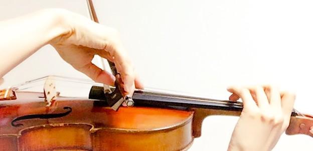 ピッチカート4 東京・中野・練馬・江古田、ヴァイオリン・ヴィオラ・音楽教室
