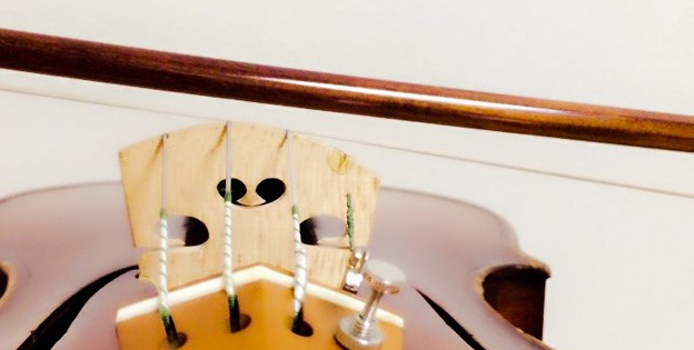 Photos: 移弦4 東京・中野・練馬・江古田、ヴァイオリン・ヴィオラ・音楽教室