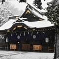 写真: 雪の中のご本殿
