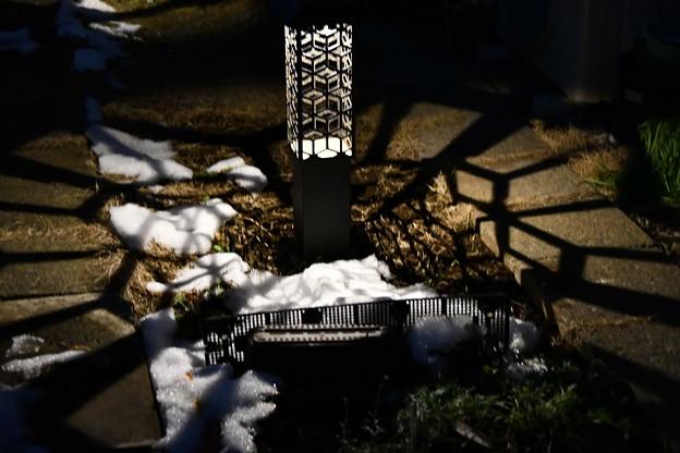 Photos: 雪残る庭