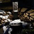 写真: 雪残る庭