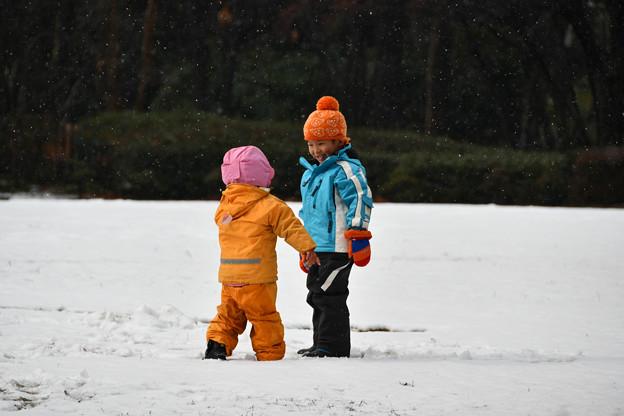 写真: 雪の中のきょうだい・