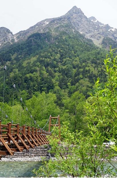 写真: とんがりお山は明神岳
