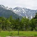 Photos: 田代湿原