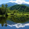 写真: 夏姿の乗鞍岳