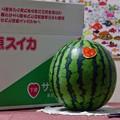Photos: 完熟スイカ