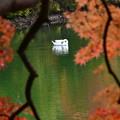 写真: 静かなひととき・・・