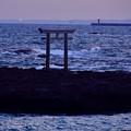 写真: 赤い灯台も見えて・・