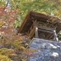 Photos: 鐘の音響くごとに秋は深まる・・