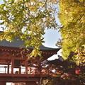 Photos: 朱塗りの鐘楼門