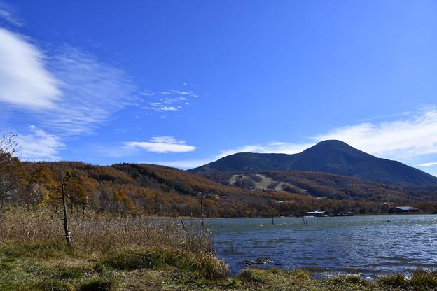 Photos: 晩秋の湖
