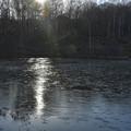 Photos: 薄氷の池