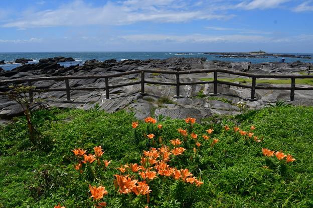 Photos: 海風も好き!