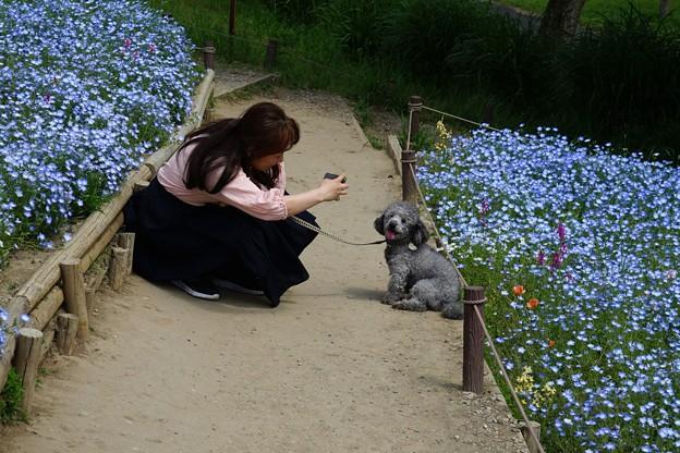 花園のワンちゃん