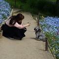 Photos: 花園のワンちゃん