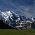 Photos: アイスクリームの山