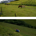 Photos: ♪のんびり~♪