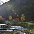 Photos: 川辺の秋