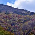 Photos: 山の秋