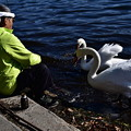 Photos: 白鳥おじさんと・・・